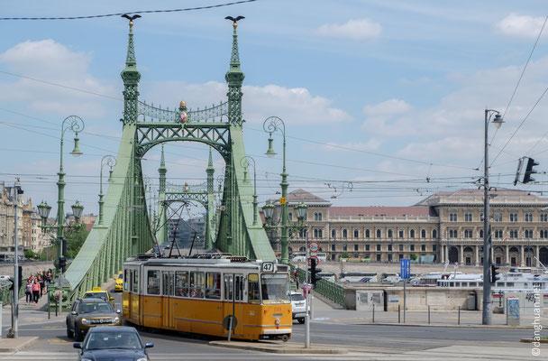 Le pont Szabadsag devant le Gellert