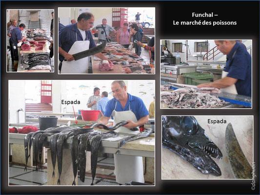 Funchal - marché