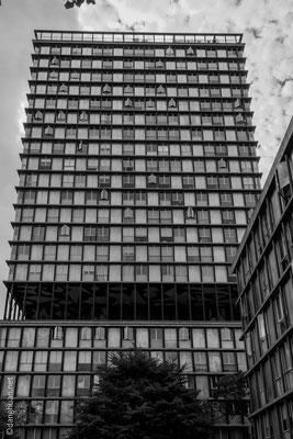 Première tour à usage de logements de Paris, construit par l'architecte Edouard Albert en 1960 avec des techniques novatrices : structures des poteaux d'acier creux, habillage de panneaux d'inox, matériaux préfabriqués.