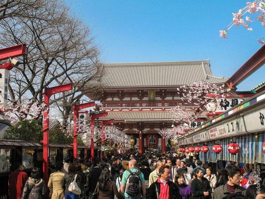 Sanctuaire Asakusa Kannon