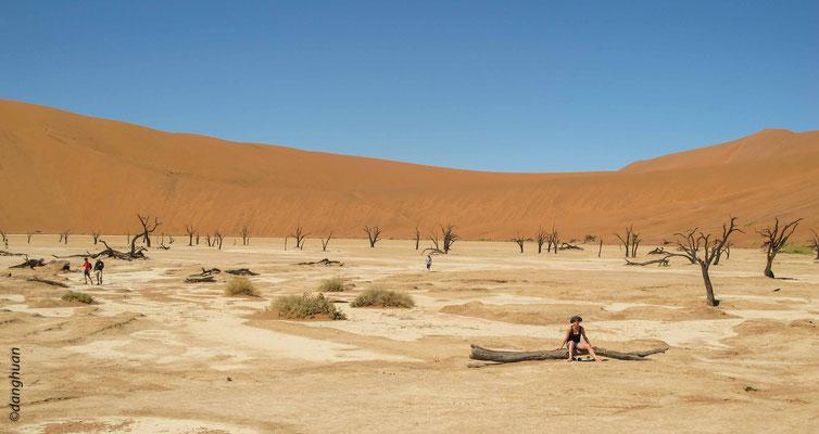 Les dunes de Sossusvlei se sont formées par l'accumulation de grains de sable transportés par les vents d'est sur des distances assez considérables, parfois depuis l'intérieur du Kalahari