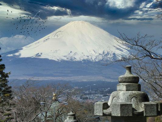 Sauve qui peut (Mont Fuji)