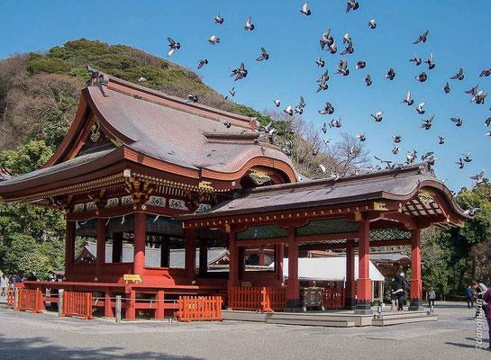 Nikko - Sanctuaire  Toshugo