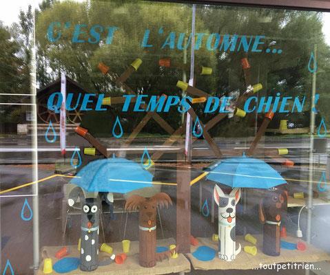 Décoration vitrines automne clinique vétérinaire. www.toutpetitrien.ch - fleurysylvie