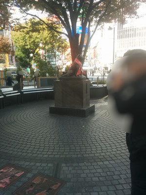 4 Statue of the famous dog Hachiko, who waited at the station everyday for his owner who had already passed away