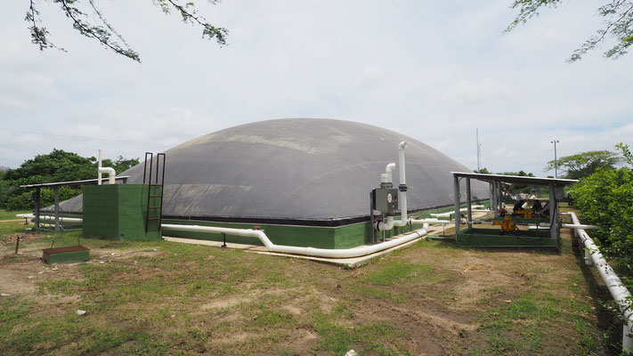 Lagoon digester - slaughterhouse / Biodigestor para matadero frigorifico  de reses