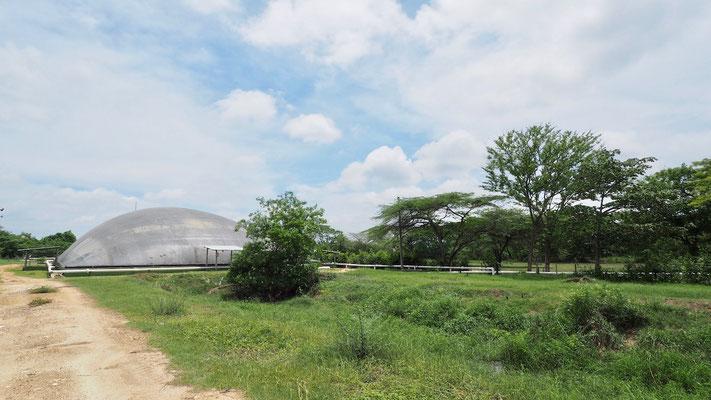 Covered lagoon digester slaughterhouse - Biodigestor para residuos de matadero / frigorifico / rastro