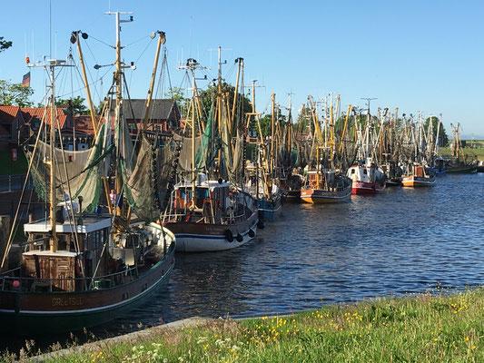 Fischkutter in Greetsiel