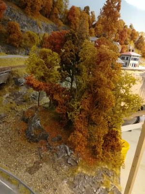 Bäume an der Bachbiegung