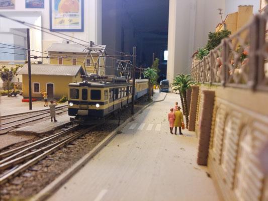 Blick von der Landseite auf den Zug.