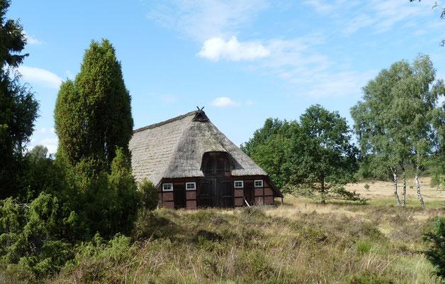Schafstall Timmerloh in der Lüneburger Heide, Deutschland