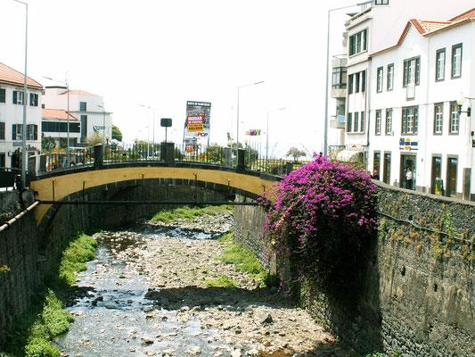 Brücke über den Bach, Funchal - Madeira