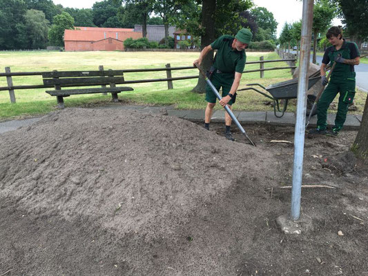 erste Bodenvorbereitungsarbeiten