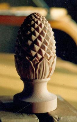 Kiefern - Zapfen