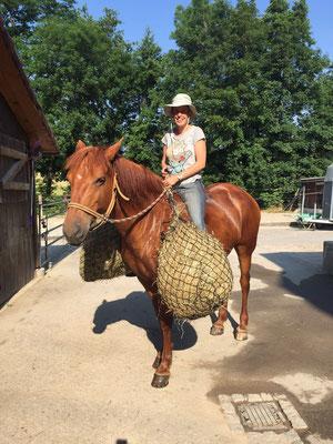 Juni Das Pferd musste zur abwechslung das Heu selber Tragen