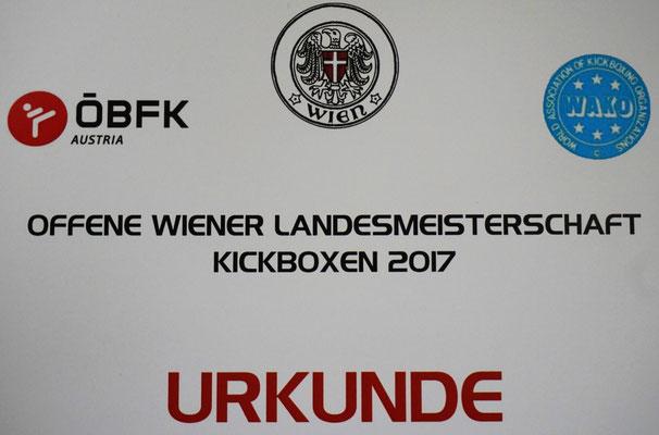 Kickboxen Wettkampf Wiener Neustadt Kickboxing 4 L&M