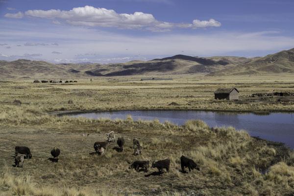 Beginn des Altiplanos