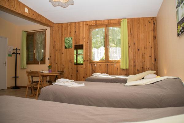 Une grande chambre aménagée avec vue sur les arbres et les écureils