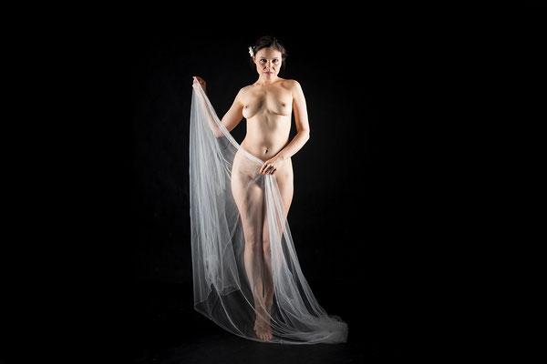 Hochzeitsschleier einmal anders