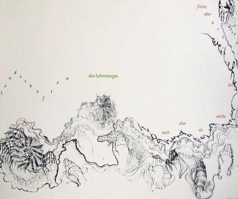 Kristin finsterbusch und Jin - Suk Kang,  Mein Wald, meine Landschaft, Künstlerbuch, Lithografie, Seite 11 von 23 Seiten, 1998, 21 x 25 cm, Auflage 20