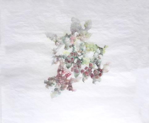 Kristin Finsterbusch, unione 5, Zeichnung, Bleistift, Farbstift, 2016, 30 x 30 cm
