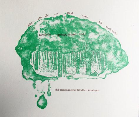Kristin finsterbusch und Jin - Suk Kang,  Mein Wald, meine Landschaft, Künstlerbuch, Lithografie, Seite 14 von 23 Seiten, 1998, 21 x 25 cm, Auflage 20