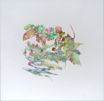 Kristin Finsterbusch, unione 10, Zeichnung, Bleistift, Farbstift, 2017, 21 x 21 cm