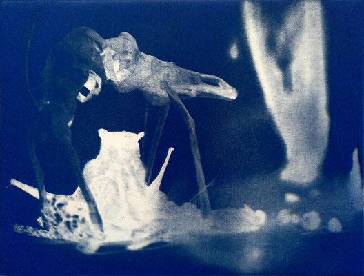 Kristin Finsterbusch, travelling animals 4, Fotoradierung,  mehrfarbig überdruckt, 2019, 15 x 20 cm