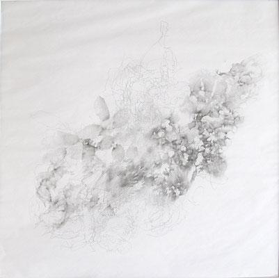Kristin Finsterbusch, VM  Z 5, Bleistift, 2016, 30 x 30