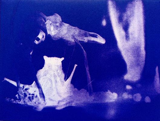 Kristin Finsterbusch, travelling animals 7, Fotoradierung,  mehrfarbig überdruckt, 2019, 15 x 20 cm