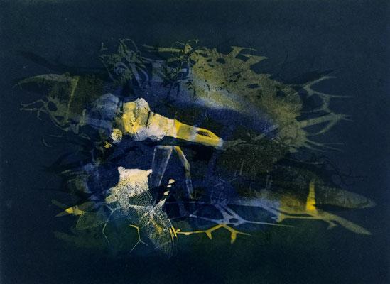 Kristin Finsterbusch, frinds blau, Fotopolymerdruck, 4 Platten, 15x20cm, 2021