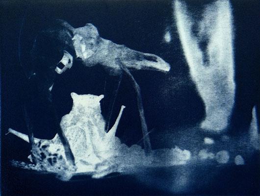 Kristin Finsterbusch, travelling animals 5, Fotoradierung,  mehrfarbig überdruckt, 2019, 15 x 20 cm