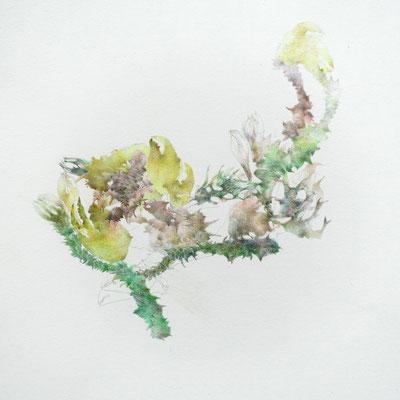 Kristin Finsterbusch, unione 9, Zeichnung, Bleistift, Farbstift, 2017, 21 x 21 cm