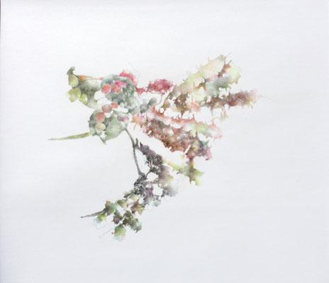 Kristin Finsterbusch, unione 4, Zeichnung, Bleistift, Farbstift, 2016, 21 x 21 cm