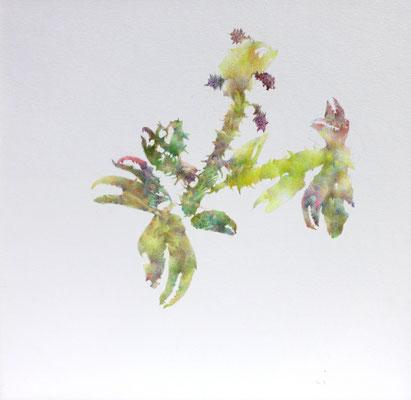 Kristin Finsterbusch, unione 15, Zeichnung, Bleistift, Farbstift, 2017, 21 x 21cm