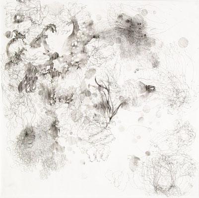 Kristin Finsterbusch, VM  Z 2, Bleistift, 2015, 30 x 30