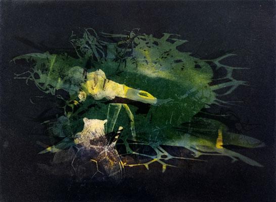 Kristin Finsterbusch, frinds 3, Fotopolymerdruck, 4 Platten, 15x20cm, 2021