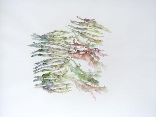 Kristin Finsterbusch, unione 8, Zeichnung, Bleistift, Farbstift, 2017, 30 x 30 cm