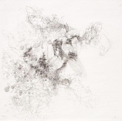 Kristin Finsterbusch, VM  Z Archäi, Bleistift, 2015, 30 x 30