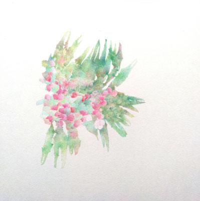 Kristin Finsterbusch, unione 18, Zeichnung, Bleistift, Farbstift, 2017, 21 x 21cm