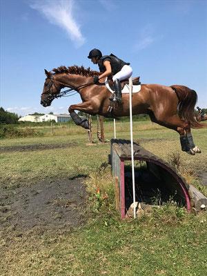Sortie en compétition du cheval de CCE avec Fanny Lelièvre, écurie les Rouillons, 89 Sens