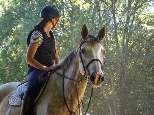 Apprendre en regardant les autres, cours d'équitation les Rouillons, Sens