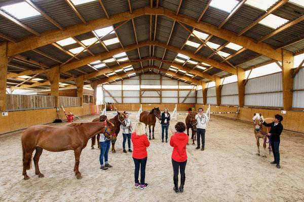 manège couvert, pension chevaux aux Rouillons, 89 Sens
