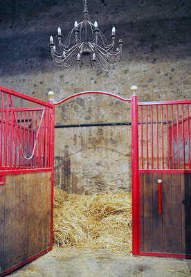 Pension pour chevaux, écurie les Rouillons, 89 Sens