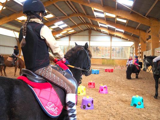 Cours de poney dans le manège, les Rouillons, Sens
