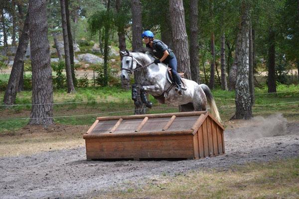Valorisation des chevaux de CCE, Ecurie les Rouillons, Sens
