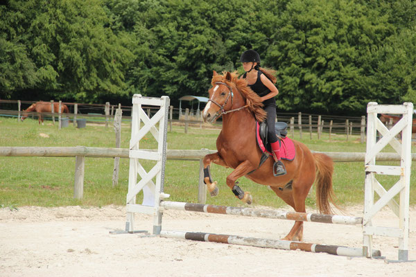 Cours de saut d'obstacle au poney club