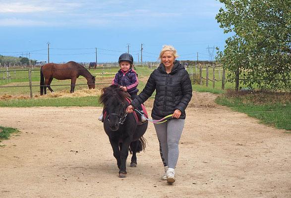 Balade en main à poney à Sens