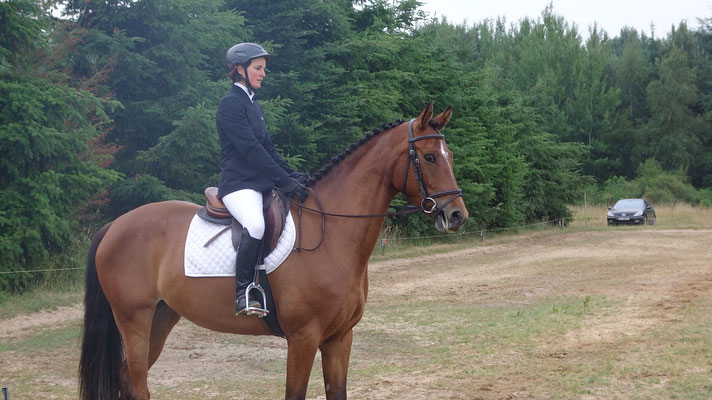 Travail du cheval de CCE avec Fanny Lelièvre, écurie les Rouillons, 89 Sens