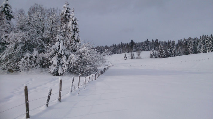 environs de Chapelle des Bois